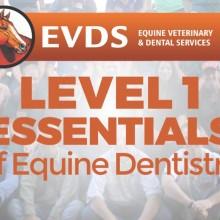 Level 1 Essentials of Equine Dentistry
