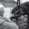 Dental Problems in Young Horses