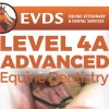 Level 4A Equine Dentistry - Advanced